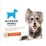 PaylesswithSS - Kit per Test del Dna per Cani