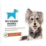 PaylesswithSS Kit de ADN para perros, fácil uso, análisis detallado de raza ancestral