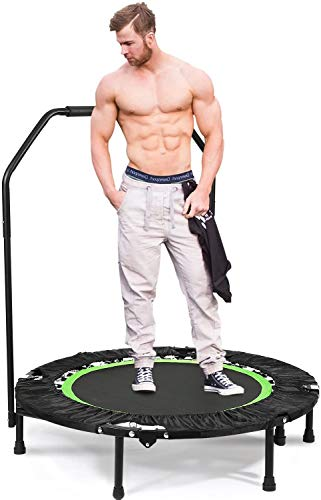 ANCHEER Fitness Trampoline for Kids with Handle Bars,40'' Rebounder Trampoline Bungee Folding,Adult Home Gym Exercise Workout Jumper with Stability for Weight Loss, Indoor/Outdoor Cardio (Green)