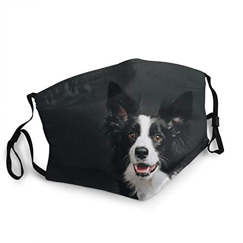 ZVEZVI Junge Border Collie Hund l?chelnd Happy Face Maske, Adult Gesichtsbedeckung mit verstellbarer Ohrenklappe f¨¹r Outdoor-Sport - Nasen- und Mundabdeckungen wiederverwendbar waschbar