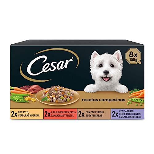 Cesar Comida Húmeda para Perros, Selección Recetas Campesinas en Salsa, Multipack (Pack de 3 x 8 Tarrinas x 150g)