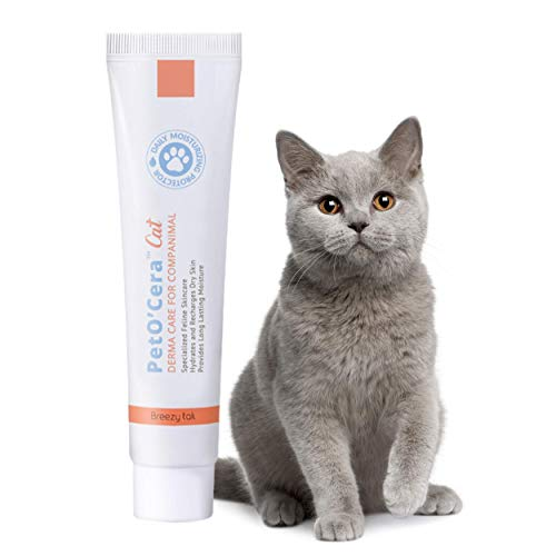 Breezytail PetO'Cera Cats – Itchy Skin Relief Treatment Cream for Cats   Paw Lotion Soothing Balm   Cat Skin Ointment…