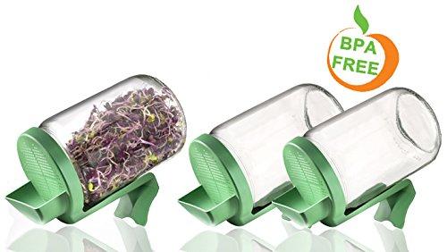 Germline - Sprossengarten im Glas - Sprossengarten im Glas Germline im Dreierpack