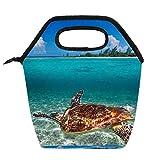 Bolsa de almuerzo práctica Caja de almuerzo portátil de alta capacidad Paquete Tortuga de mar verde en el Caribe mexicano para Trabajo de oficina Viajes escolares Mujeres Hombres