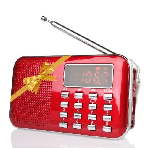 Raddy -   RF23 tragbar Radio