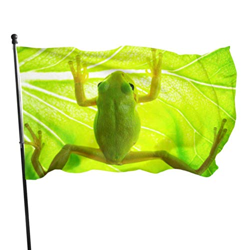 ShiHaiYunBai Flagge/Fahne, Green Tree Frog On The Leaf Close Up Printed Flag Camping Yard Flags 3x5 Feet Vibrant Colors Quality Polyester and Brass Grommets