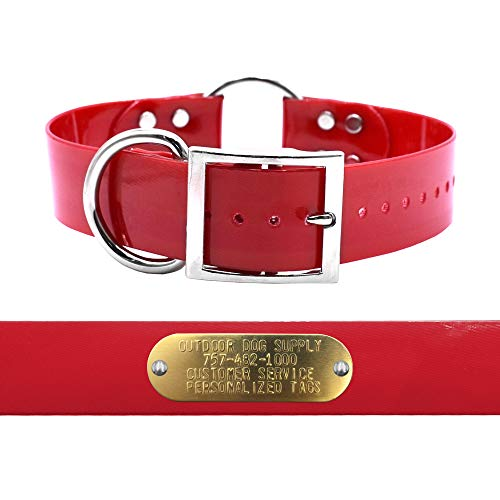 """Heavy Duty D Ring & Ring in Center 1 1/2"""" Wide Hunting Dog Collar with Free Brass Name Plate (Red)"""