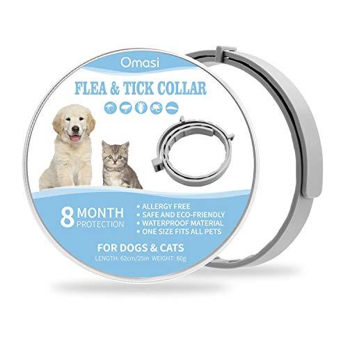 Omasi Zeckenhalsband für Hunde Katze, Floh Zecken Kragen Floh-und Zecken Prävention Halsbänder, 8 Monate Kontrolle Schutz und Verstellbar Größe Zecken Halsband