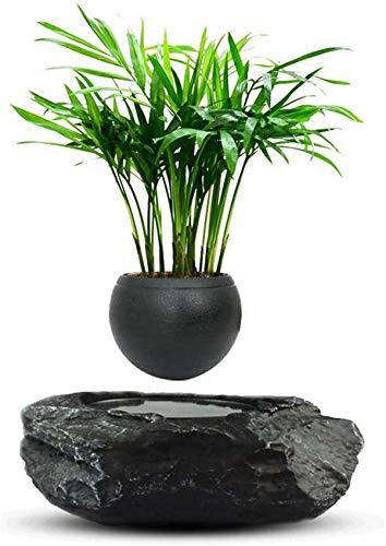 Levitating Air Bonsai Pot Macetas de Flores Macetas de levitación magnética Flor de suspensión Maceta Flotante Planta en Maceta Decoración de Oficina en el hogar, Negro -