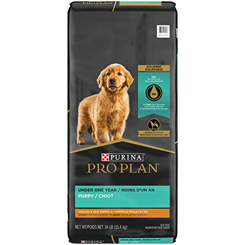 Purina Pro Plan Dry Puppy Food, FOCUS Chicken &...