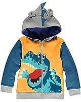 BABSUE Boys Dinosaur Hooded Ja...