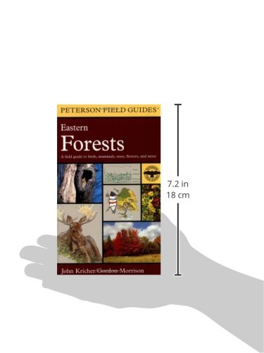 A Peterson Field Guide to Eastern Forests: North America (Peterson Field Guides)