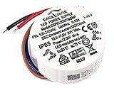 HuaTec Eaglerise Transformador LED 700mA 3W 9W 18W 30W Impermeable IP65 Corriente Constante para Lampara LED Alimentador Fuente de Alimentación LED (9W)