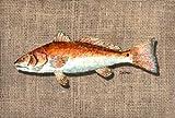 Fish Red Fish tovaglietta in tessuto