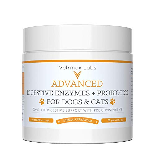 Vetrinex Labs Digestive Enzymes and Probiotics for Dogs and Cats - 60 GMS Probiotic Powder with Digestive Enzymes for Constipation, Diarrhea, and Coprophagia - UTI Skin Yeast Infection Treatment