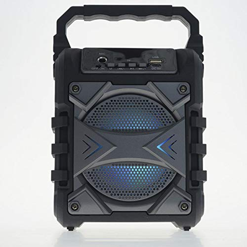 SOGO SS-8462 Mini-Lautsprecher, kabellos, sehr leistungsstark, Bluetooth, FM-Radio, AUX-IN, USB, Micro SD, Grau