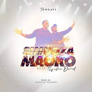 Simudza Maoko (feat. Nyasha David)