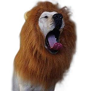 Costumes, perruque, crinières de fête avec oreilles pour animaux domestiques: chien, lors de l'halloween; Déguisement en crinière de lion pour chien et costume taille M et L
