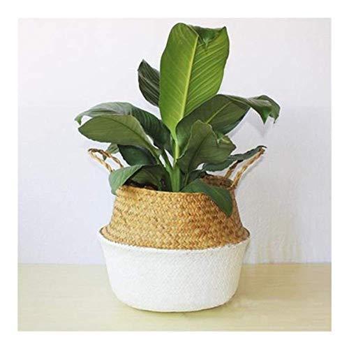 MxZas Candelabra creative Bamboo Storage Basket, Foldable Laundry Basket, Straw Patchwork, Wicker Rattan, Seaweed Garden Flowerpot (Colore : WHITE) Jzx-n