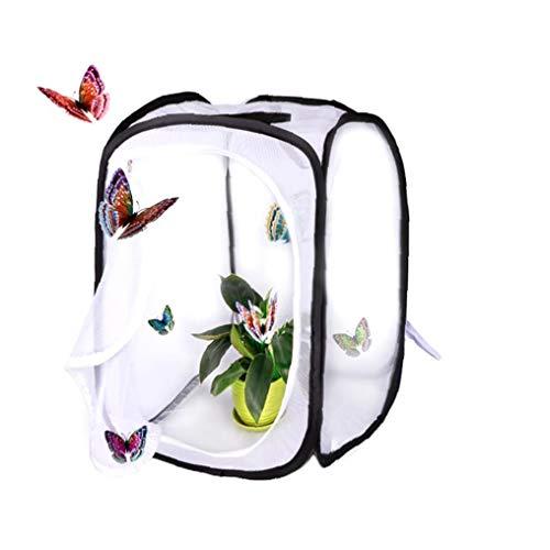 Zusammenklappbar Insekten- Und Schmetterling Habitat Käfig Net Pop-up Breath Insekt Zucht Net Schmetterling Incubator (15.7 X 15.7 X23.6 Zoll) Dekoration Supplies