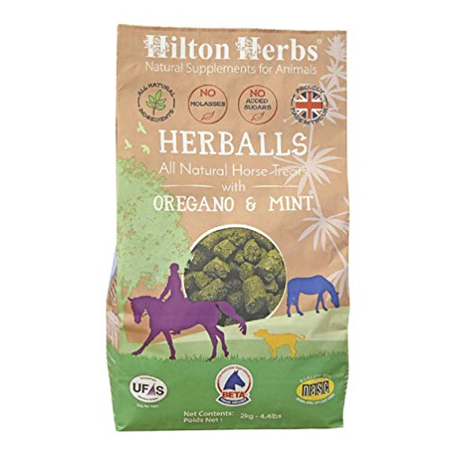 Hilton Herbs Herballs All Natural Horse Treat with Oregano and Mint 1.1 lb