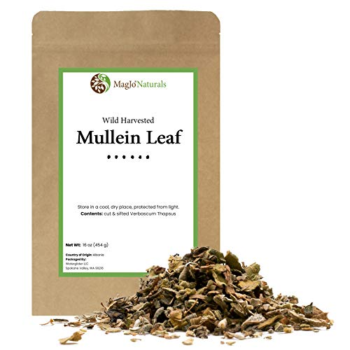 Mullein Leaf | Cut and Sifted | Wild-Crafted | Loose Leaf Tea | 16 ounces