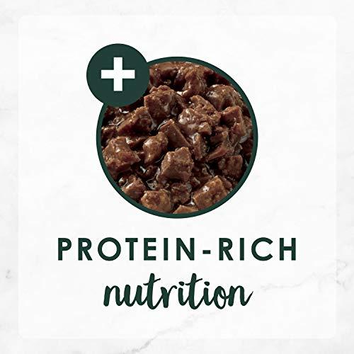 Purina Fancy Feast High Protein Senior Gravy Wet Cat Food, Chicken Feast Minced Senior 7+ - (24) 3 oz. Cans