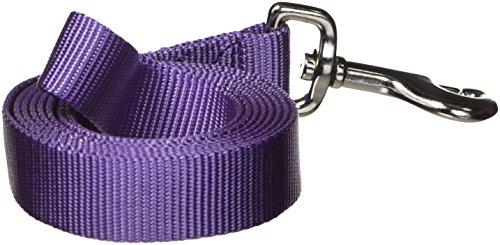 Zack & Zoey Basic Nylon Dog Leash, 6-Feet x 1-Inch Lead, Ultra Violet