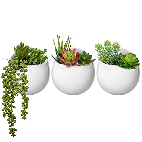 Mkono Wall Planter with Artificial Plants, Decorative Potted Fake Succulents Picks Assorted Faux Succulent in Modern Ceramic Hanging Plant Pot Vase for Home Decor, Set of 3