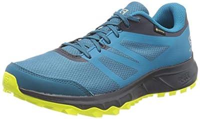 Salomon Men's TRAILSTER 2 GTX Trail Running Shoes, Blue (Lyons Blue/Navy Blazer/Evening Primrose Blue), 11 UK