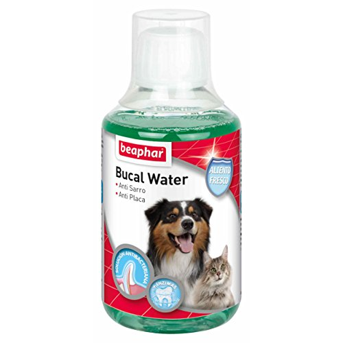Beaphar BUCAL Water Perro Y Gato 250ML 🔥