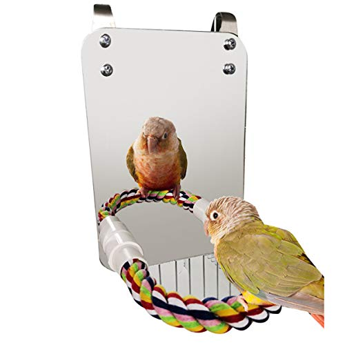 Haokaini Bird Mirror Toy With Rope Perch Parrot Bite Toy with Large Mirror Parrot Claw Birdcage Perches Mirror Chew Toy For Budgie Parakeet Cockatiels Lovebirds