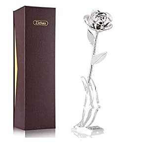ZJchao 24K Silver Plated Rose Gifts for Her Valentine's Day, Eternity Love Real Silver Plated Preserved Rose Flower Without Rose Stand Present for Wife/Girlfriend/Mom/Grandma(Silver Without Stand)