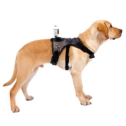 STOBOK Fetch Dog Harness No Pull Vest Harness Chest Harness Mount Adjustable Chest Strap Belt for Travel Action Cameras Accessories L
