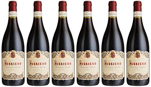 Lamberti Passieno Appassimento Rotwein trocken Wein (6 x 0.75 l)