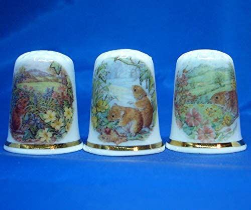 Birchcroft Porcelain China Collectable - Set of Three Thimbles -