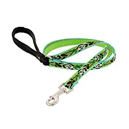 Lupine Patterned Padded Handle Dog Lead, 1 inch