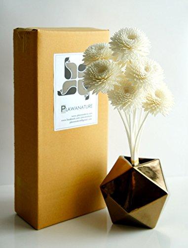 Exotique proudnature Lot de 10 Gerbera Conception 5,1 cm Sola en Bois avec fleur Reed Diffuseur de parfum d'intérieur Aroma Huile.