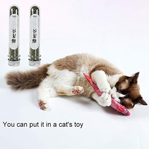 Etophigh Fresh Catnip Organic Enthaarungsmittel Hairy Minze Natur Flasche Catnip für Katzen Kätzchen gehen Hairball
