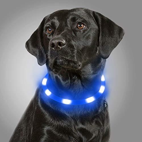 Joytale Collar Luminoso Perro, Collar para Mascotas LED Ajustables con Luz, Collares Recargable USB para Perros Pequeños, Medianos y Grandes, Azul