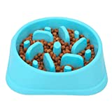NOYAL Dog Slow Feeder Bowl, Non Slip Puzzle Bowl - Anti-Gulping Pet Slower Food Feeding Dishes - Interactive Bloat Stop Dog Bowls - Durable Preventing Choking Healthy Design Dogs Bowl