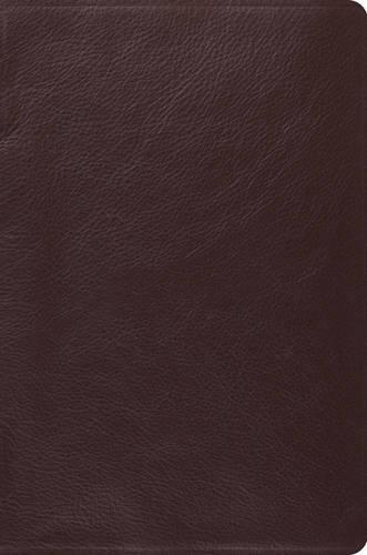 Holy Bible: English Standard Version, Brown, Top Grain Leather, Single Column Legacy