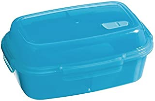 Cypress Blue Divided Lunch Box with Cooling Gelpack and Carrying Bag