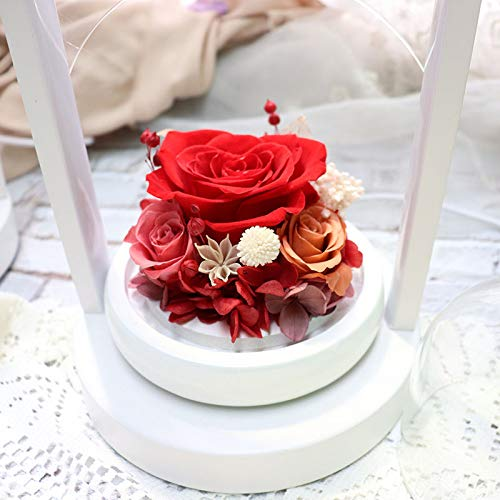 DKFS eeuwige bloem 520 cadeau Valentijnsdag roterende kleine liefde glazen tafellamp rood
