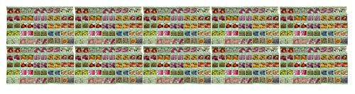 Set of 500 Assorted  Flower Seed Packets! Flower Seeds in Bulk - 20+ Varieties Available! (500)