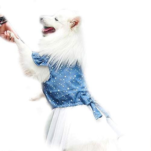 Polka Stip Grote Grote Hond Prinses Jurk Tutu Rok Golden Retriever Pitbull Zomer Hond Kleding Hoodie Kostuum, XL(Bus t29.9inch), Blauw
