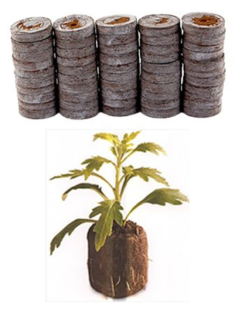 50 Count - Jiffy 7 Peat Pellets - Seed Starter...
