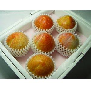 長野県産 プラム 秋 姫 (5〜8個) 化粧箱入り