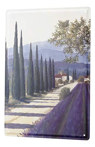 LEotiE SINCE 2004 Blechschild Galerie Maler Franz Heigl Bild Toskana Landschaft Lavendel Zypressen Allee 20x30 cm Metallschilder Nostalgie Küche
