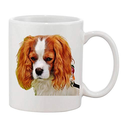 Gifts & Gadgets Co. Kaffeetasse Cavalier King Charles Spaniel, bedruckt, 325 ml